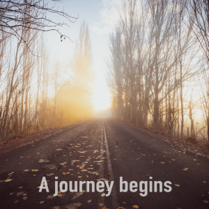 An Autumnal road with the words A Journey Begins at the bottom